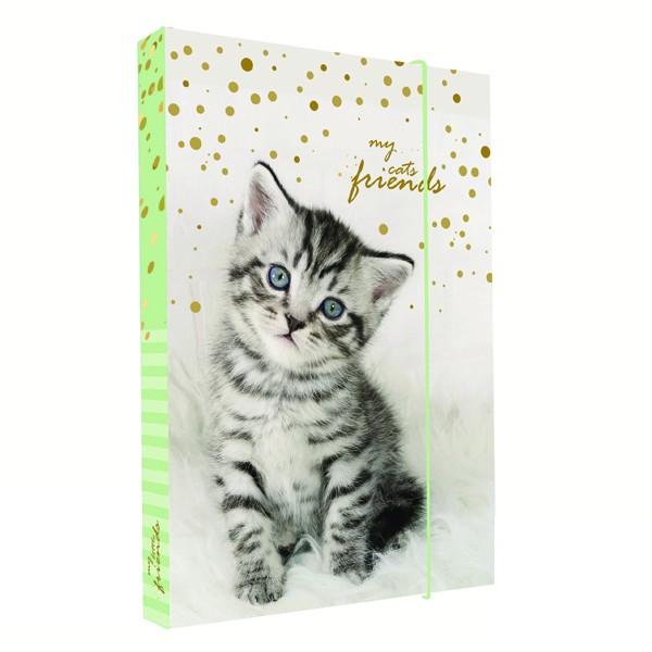 ea30ea1baa Dosky na zošity A4 Mačka 2